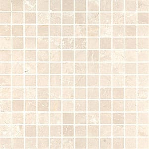Sahara Beige Honed 12x12 1x1