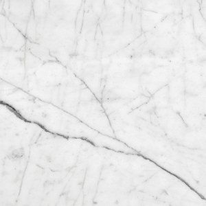 Italian Carrara Honed 12x12