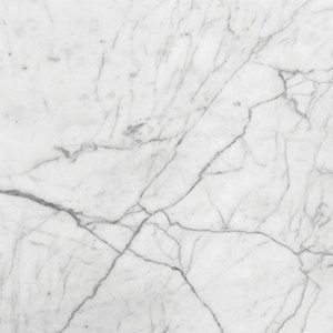 Italian Carrara Honed 18x18