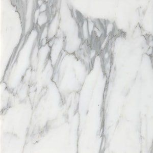 Calacatta T Polished 24x24