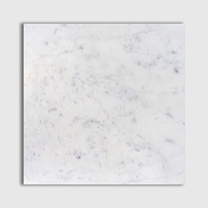 White Carrara Standard Honed 12x12