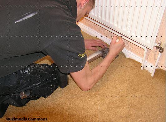 Carpet-Installer